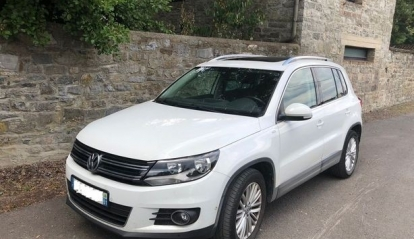 Volkswagen Tiguan 2.0 L 110 BlueMotion Technology Cup 2014